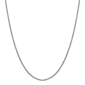 Picture of Silver Rolo Chain: 18-21""